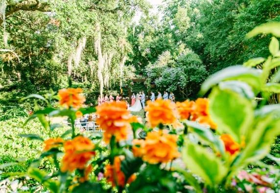 www.kellydillonphoto.com67.jpg