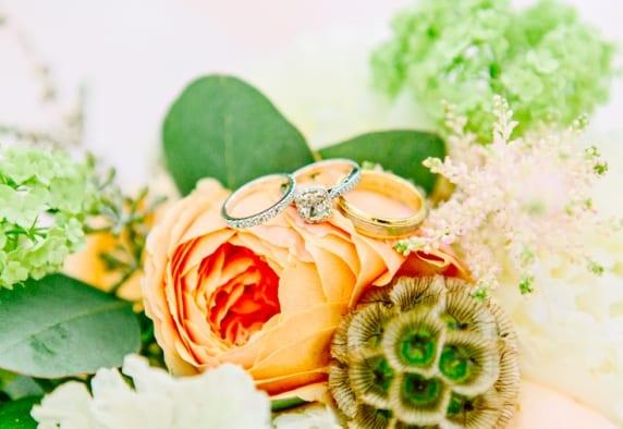 www.kellydillonphoto.com9
