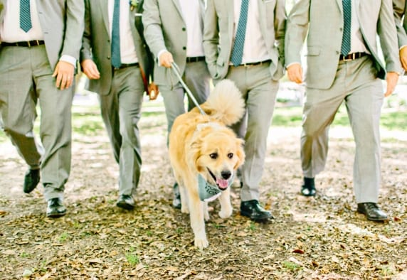 www.kellydillonphoto.com70.jpg