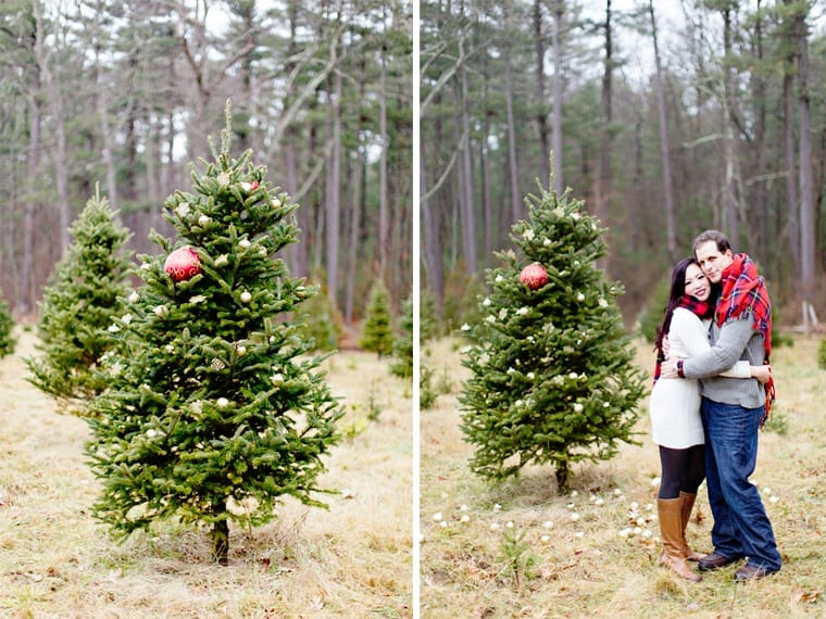 www kellydillonphoto com1 - Christmas Tree Farm Colorado