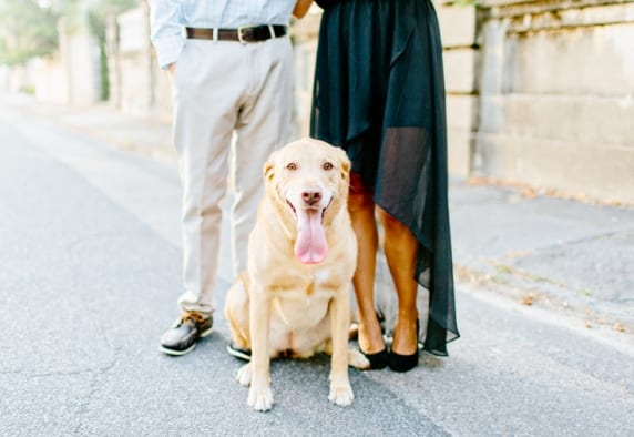 www.kellydillonphoto.com48