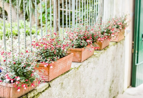 www.kellydillonphoto.com134