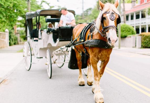 www.kellydillonphoto.com45.jpg