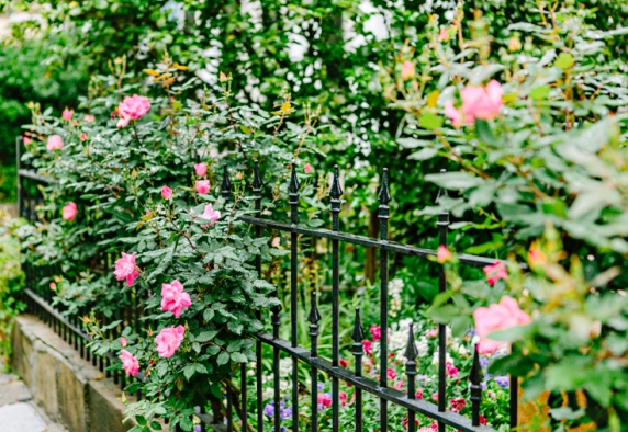 www.kellydillonphoto.com6.jpg